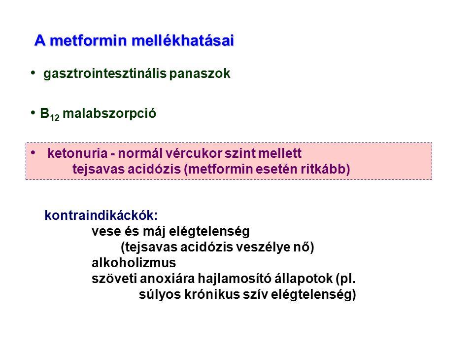 gasztrointesztinális panaszok B 12 malabszorpció ketonuria - normál vércukor szint mellett tejsavas acidózis (metformin esetén ritkább) kontraindikáck