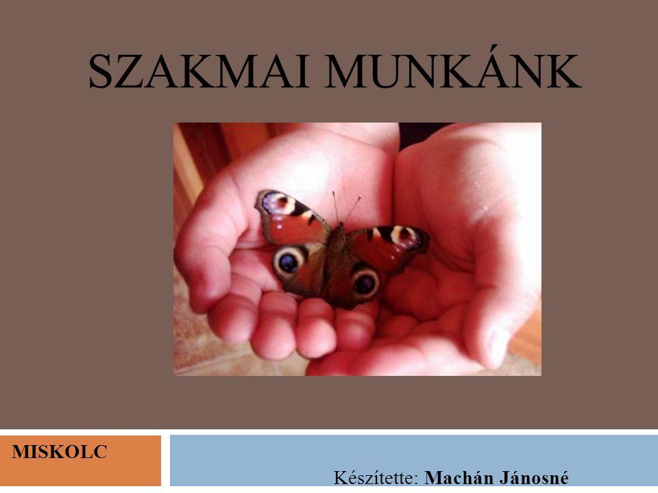 SZAKMAI MUNKÁNK MISKOLC Készítette: Machán Jánosné