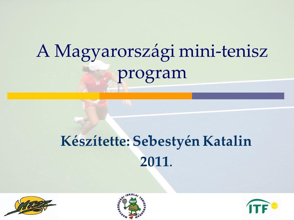 Budapest Oct2005 Mike Barrell A Magyarországi mini-tenisz program.