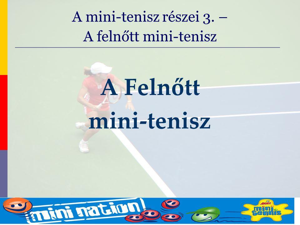 evolve9 Mike Barrell Budapest October 2005 A Felnőtt mini-tenisz A mini-tenisz részei 3. – A felnőtt mini-tenisz