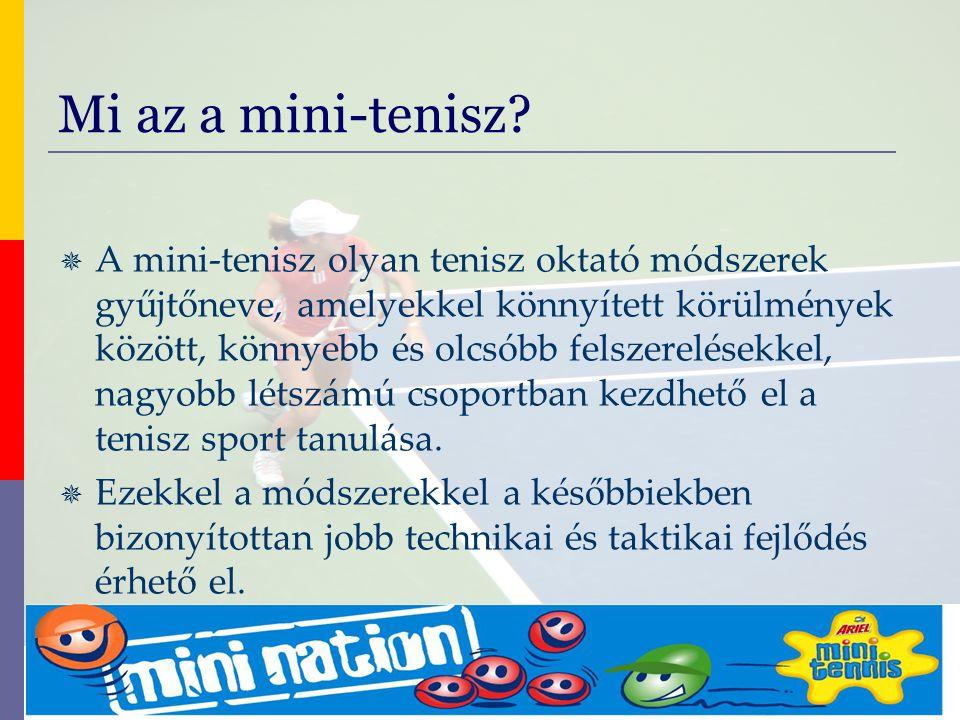 """evolve9 Mike Barrell Budapest October 2005 A Play and Stay módszer Üzenete: """"A tenisz könnyebben és gyorsabban megtanulható és élvezhető MINDENKI számára, ha a Play and Stay módszert használjuk! A mini-tenisz részei – A szakmai módszerek"""