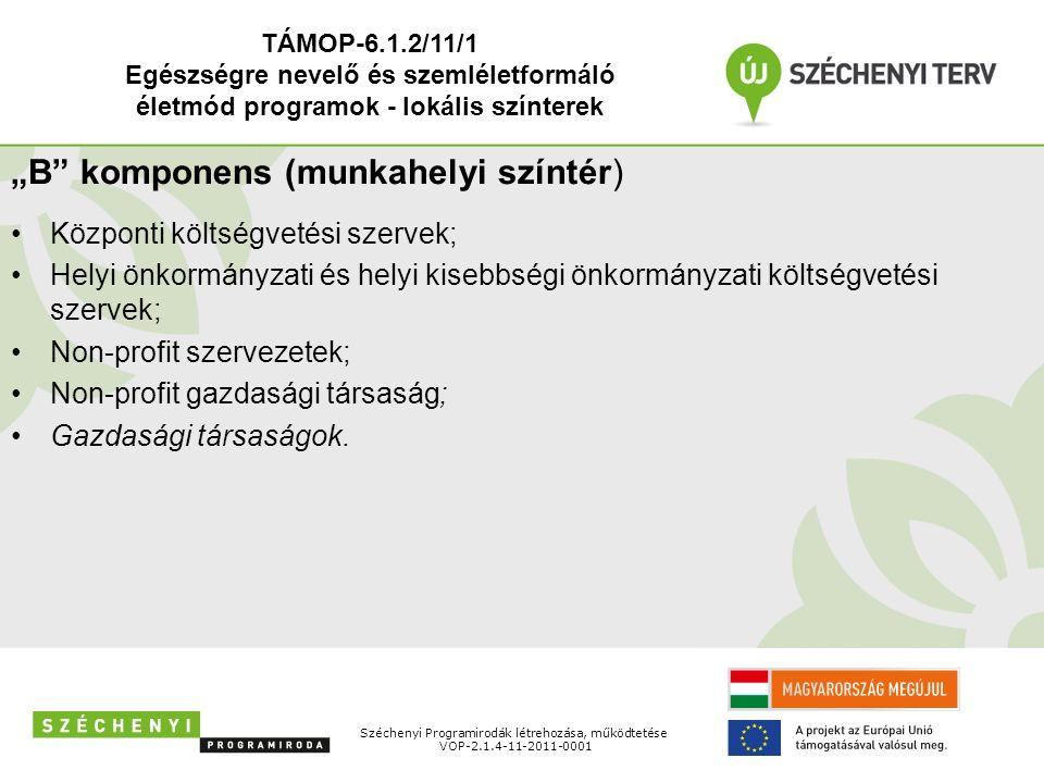 """Széchenyi Programirodák létrehozása, működtetése VOP-2.1.4-11-2011-0001 """"B"""" komponens (munkahelyi színtér) Központi költségvetési szervek; Helyi önkor"""