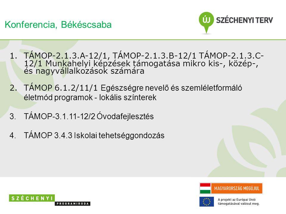 1.TÁMOP-2.1.3.A-12/1, TÁMOP-2.1.3.B-12/1 TÁMOP-2.1.3.C- 12/1 Munkahelyi képzések támogatása mikro kis-, közép-, és nagyvállalkozások számára 2.TÁMOP 6.1.2/11/1 Egészségre nevelő és szemléletformáló életmód programok - lokális színterek 3.TÁMOP-3.1.11-12/2 Óvodafejlesztés 4.TÁMOP 3.4.3 Iskolai tehetséggondozás Konferencia, Békéscsaba