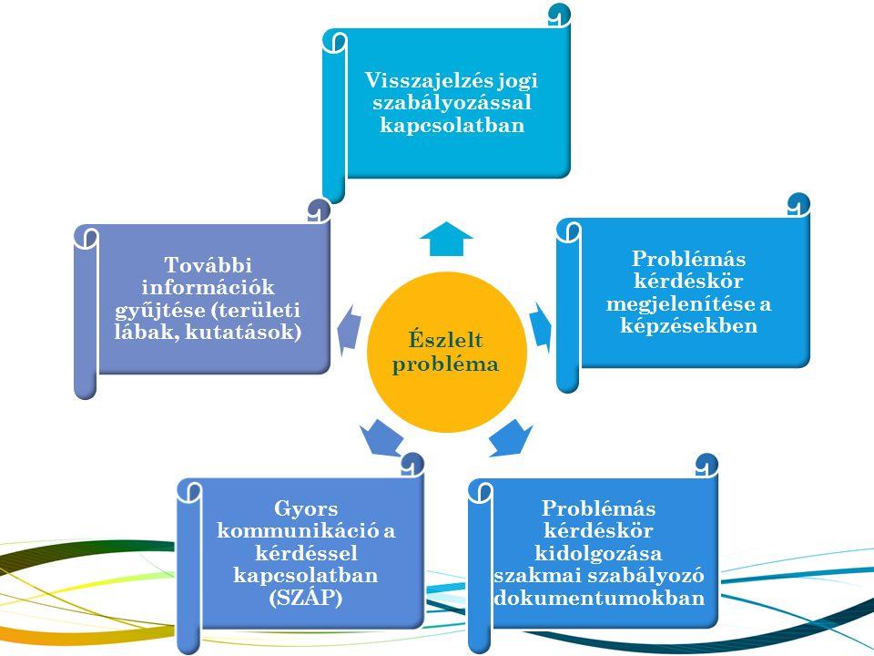 Észlelt probléma Visszajelzés jogi szabályozással kapcsolatban Problémás kérdéskör megjelenítése a képzésekben Problémás kérdéskör kidolgozása szakmai szabályozó dokumentumokban Gyors kommunikáció a kérdéssel kapcsolatban (SZÁP) További információk gyűjtése (területi lábak, kutatások)
