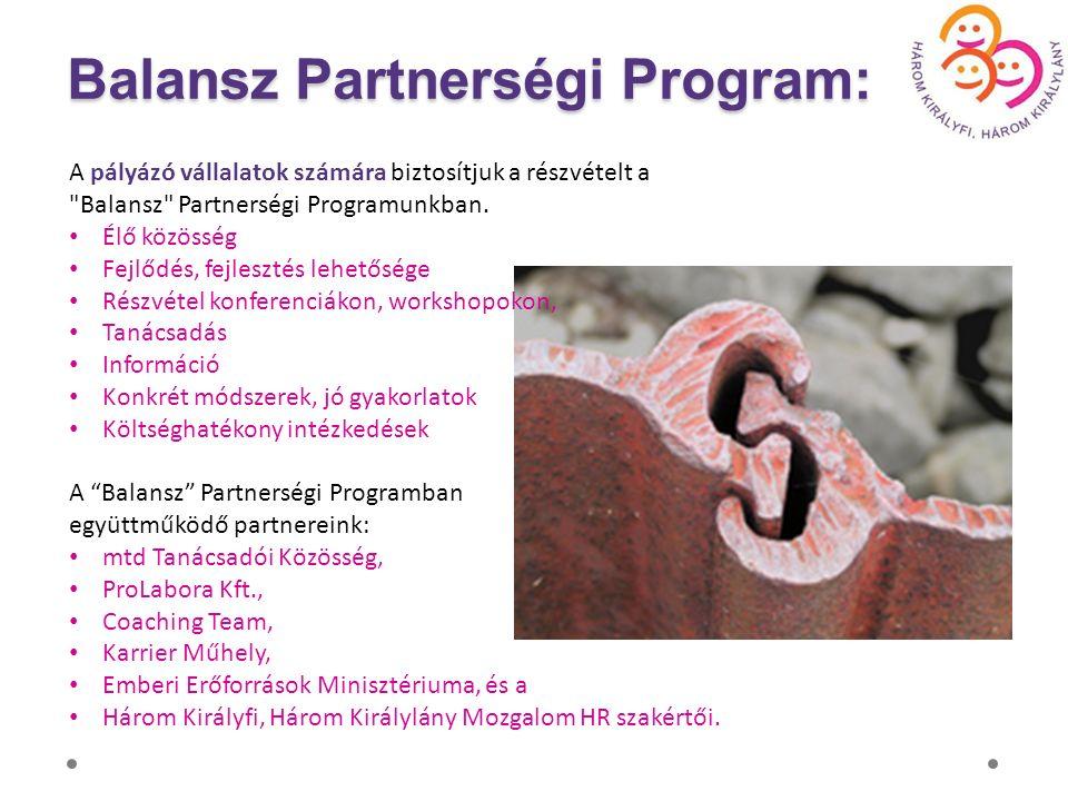 A pályázó vállalatok számára biztosítjuk a részvételt a Balansz Partnerségi Programunkban.