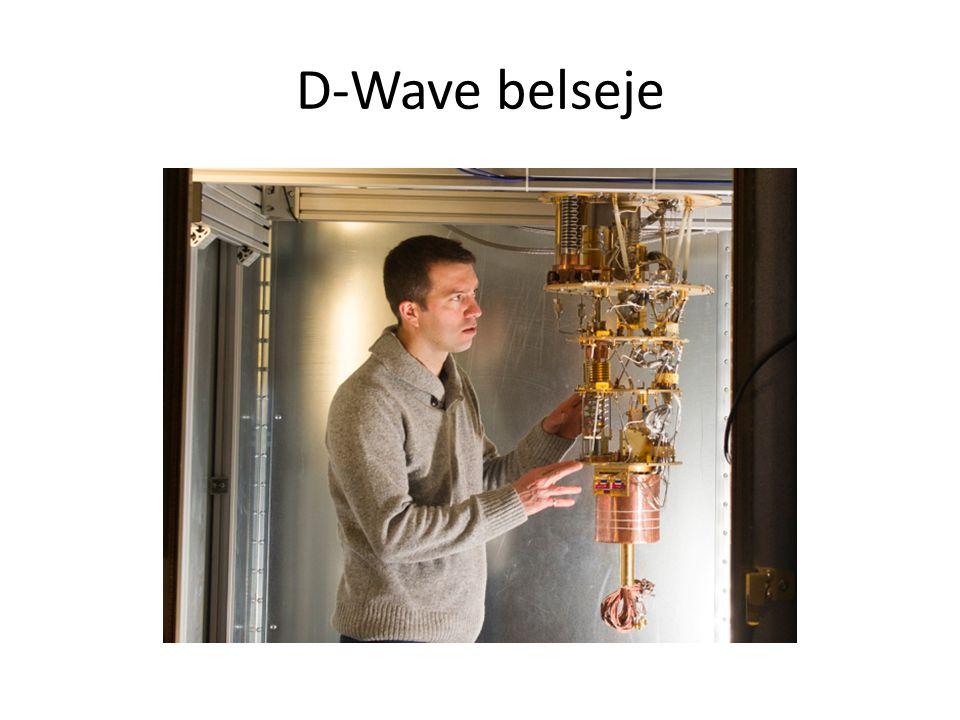 D-Wave belseje