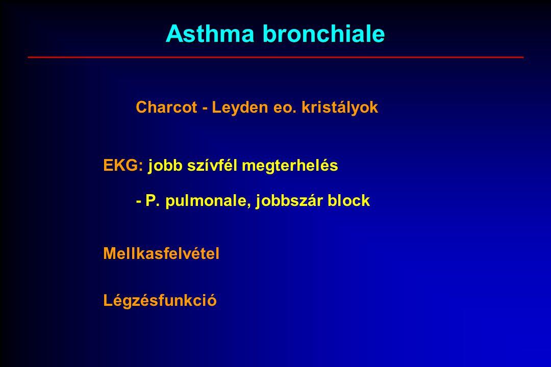 Asthma bronchiale Charcot - Leyden eo. kristályok EKG: jobb szívfél megterhelés - P. pulmonale, jobbszár block Mellkasfelvétel Légzésfunkció