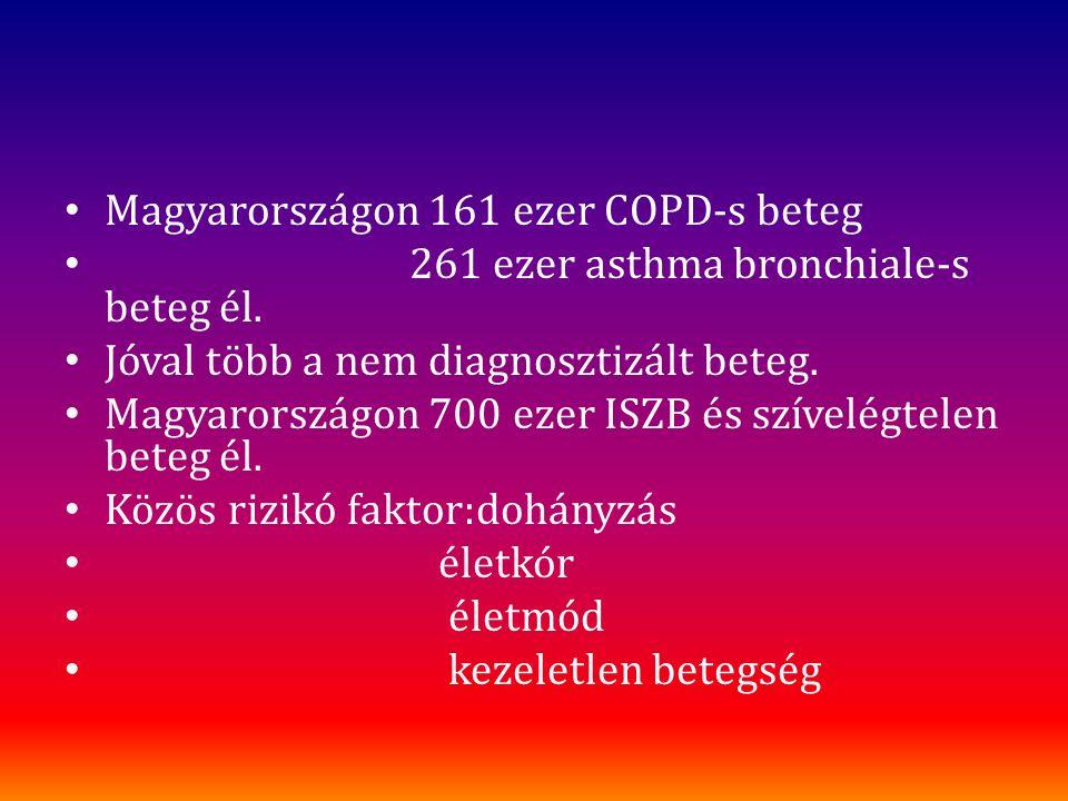 Magyarországon 161 ezer COPD-s beteg 261 ezer asthma bronchiale-s beteg él. Jóval több a nem diagnosztizált beteg. Magyarországon 700 ezer ISZB és szí