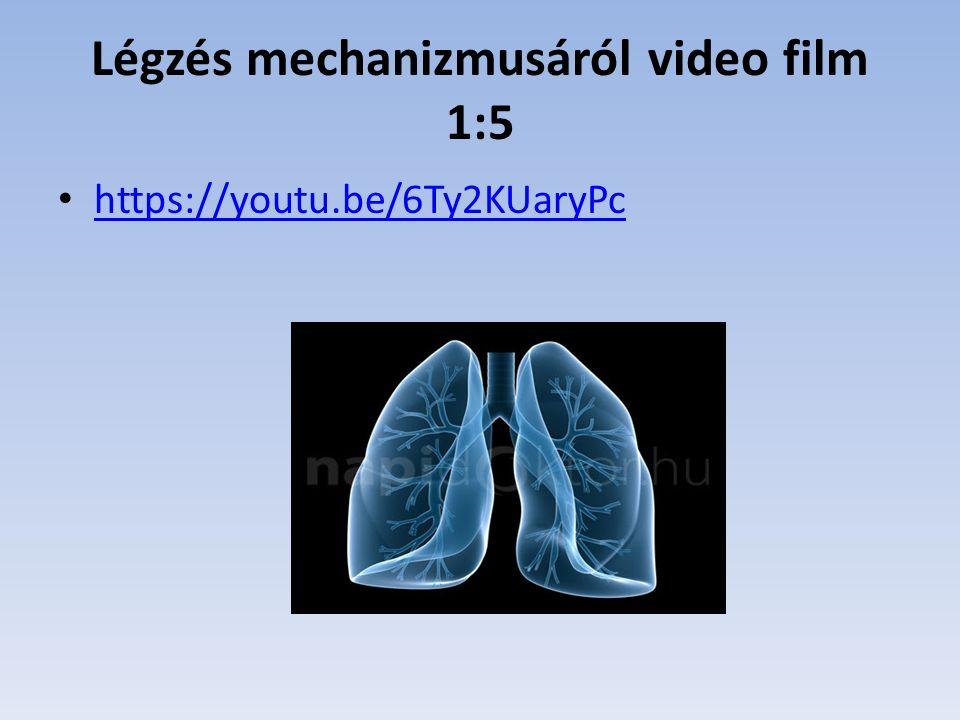 Légzés mechanizmusáról video film 1:5 https://youtu.be/6Ty2KUaryPc