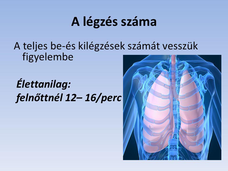 A légzés száma A teljes be-és kilégzések számát vesszük figyelembe Élettanilag: felnőttnél 12– 16/perc