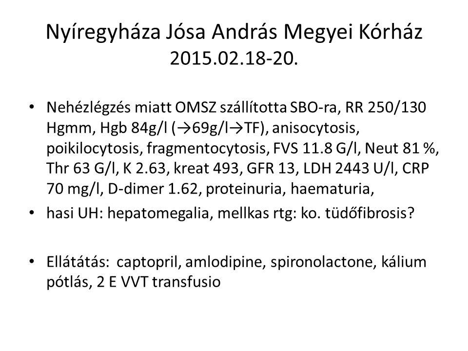 Nyíregyháza Jósa András Megyei Kórház 2015.02.18-20. Nehézlégzés miatt OMSZ szállította SBO-ra, RR 250/130 Hgmm, Hgb 84g/l (→69g/l→TF), anisocytosis,