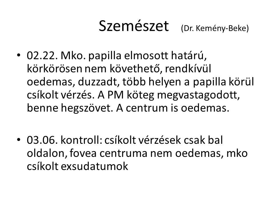 Szemészet (Dr.Kemény-Beke) 02.22. Mko.