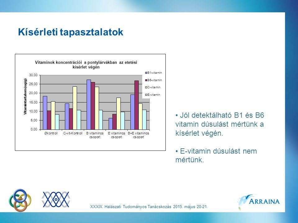 Kísérleti tapasztalatok Jól detektálható B1 és B6 vitamin dúsulást mértünk a kísérlet végén.