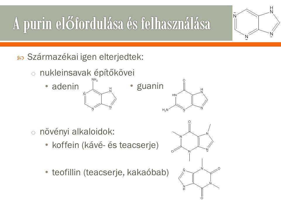  Származékai igen elterjedtek: o nukleinsavak építőkövei adenin o növényi alkaloidok: koffein (kávé- és teacserje) teofillin (teacserje, kakaóbab) guanin