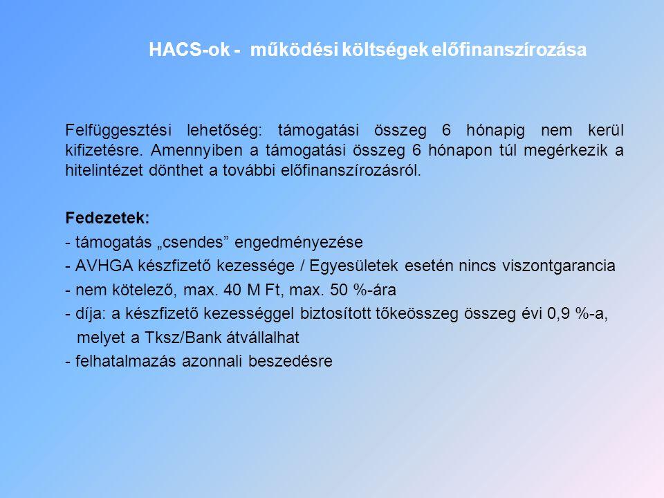 HACS-ok - működési költségek előfinanszírozása Felfüggesztési lehetőség: támogatási összeg 6 hónapig nem kerül kifizetésre. Amennyiben a támogatási ös