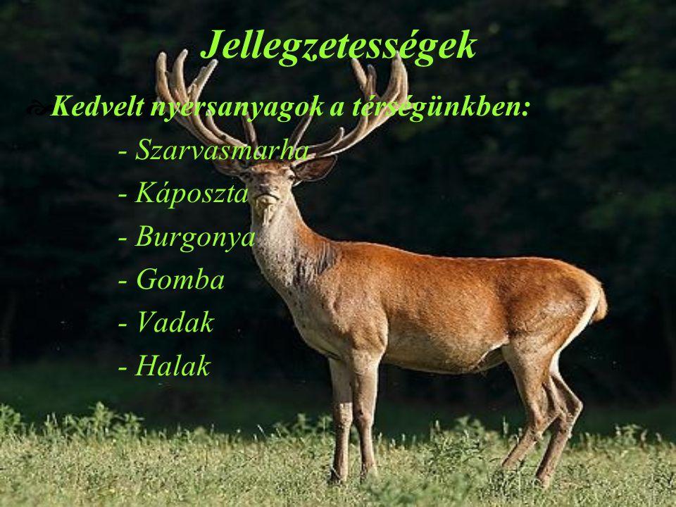 Jellegzetességek  Kedvelt nyersanyagok a térségünkben: - Szarvasmarha - Káposzta - Burgonya - Gomba - Vadak - Halak