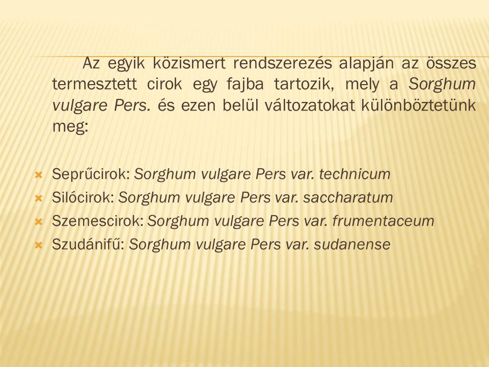 Az egyik közismert rendszerezés alapján az összes termesztett cirok egy fajba tartozik, mely a Sorghum vulgare Pers. és ezen belül változatokat különb