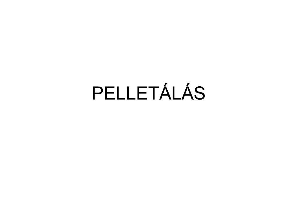 PELLETÁLÁS