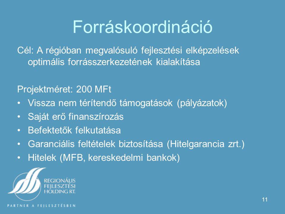 11 Forráskoordináció Cél: A régióban megvalósuló fejlesztési elképzelések optimális forrásszerkezetének kialakítása Projektméret: 200 MFt Vissza nem térítendő támogatások (pályázatok) Saját erő finanszírozás Befektetők felkutatása Garanciális feltételek biztosítása (Hitelgarancia zrt.) Hitelek (MFB, kereskedelmi bankok)