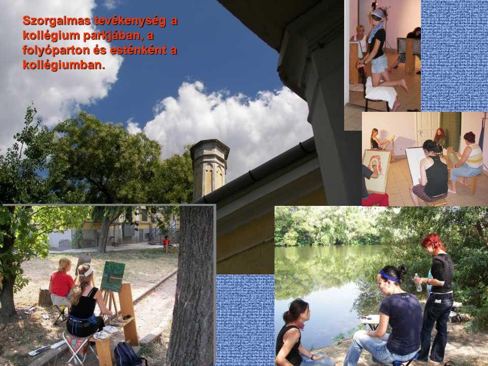 Szorgalmas tevékenység a kollégium parkjában, a folyóparton és esténként a kollégiumban.