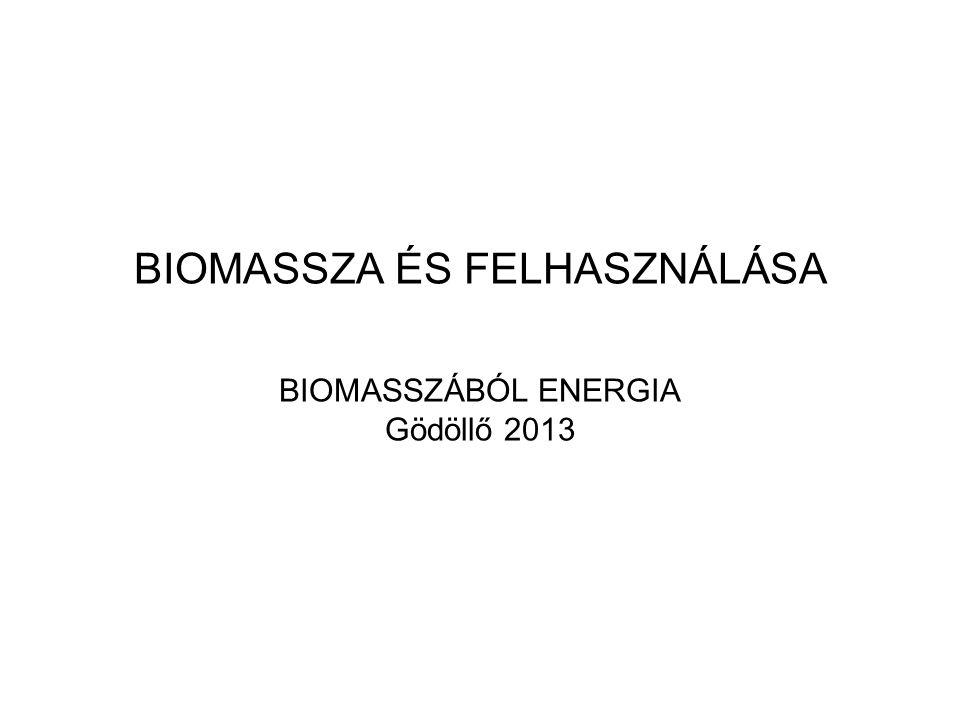 BIOMASSZA ÉS FELHASZNÁLÁSA BIOMASSZÁBÓL ENERGIA Gödöllő 2013