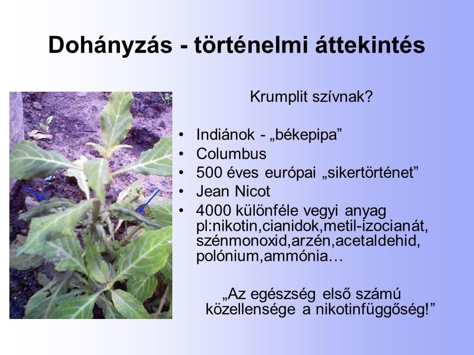 A dohányzásról leszokást segítő rendelések 1994: 36 valamennyi tüdőgondozó 2007: 117 Budapesten 22, vidéken 95 ebből tüdőgondozó 94 (80%)