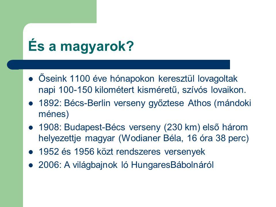 És a magyarok.