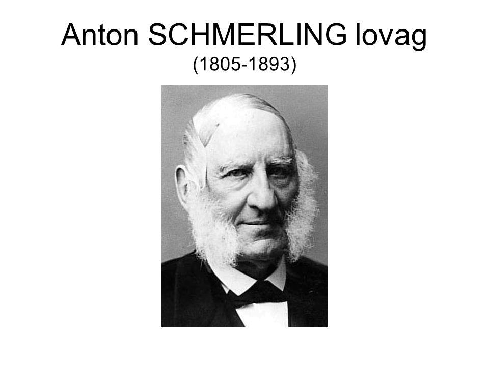Anton SCHMERLING lovag (1805-1893)