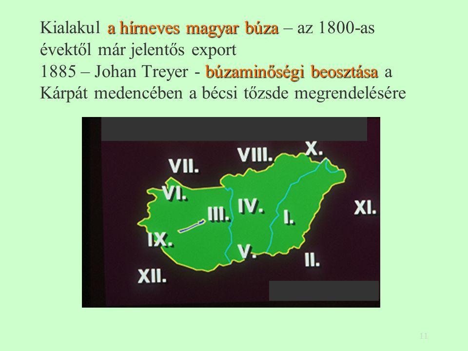 11 a hírneves magyar búza búzaminőségi beosztása Kialakul a hírneves magyar búza – az 1800-as évektől már jelentős export 1885 – Johan Treyer - búzaminőségi beosztása a Kárpát medencében a bécsi tőzsde megrendelésére