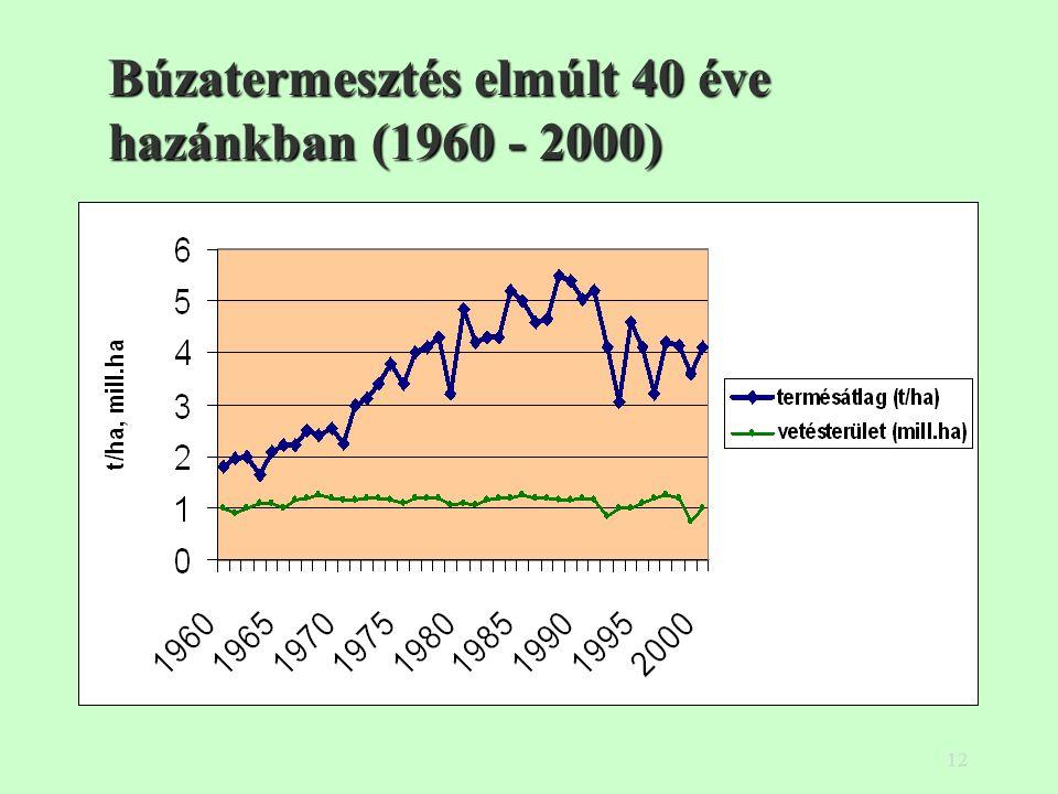 12 Búzatermesztés elmúlt 40 éve hazánkban (1960 - 2000)