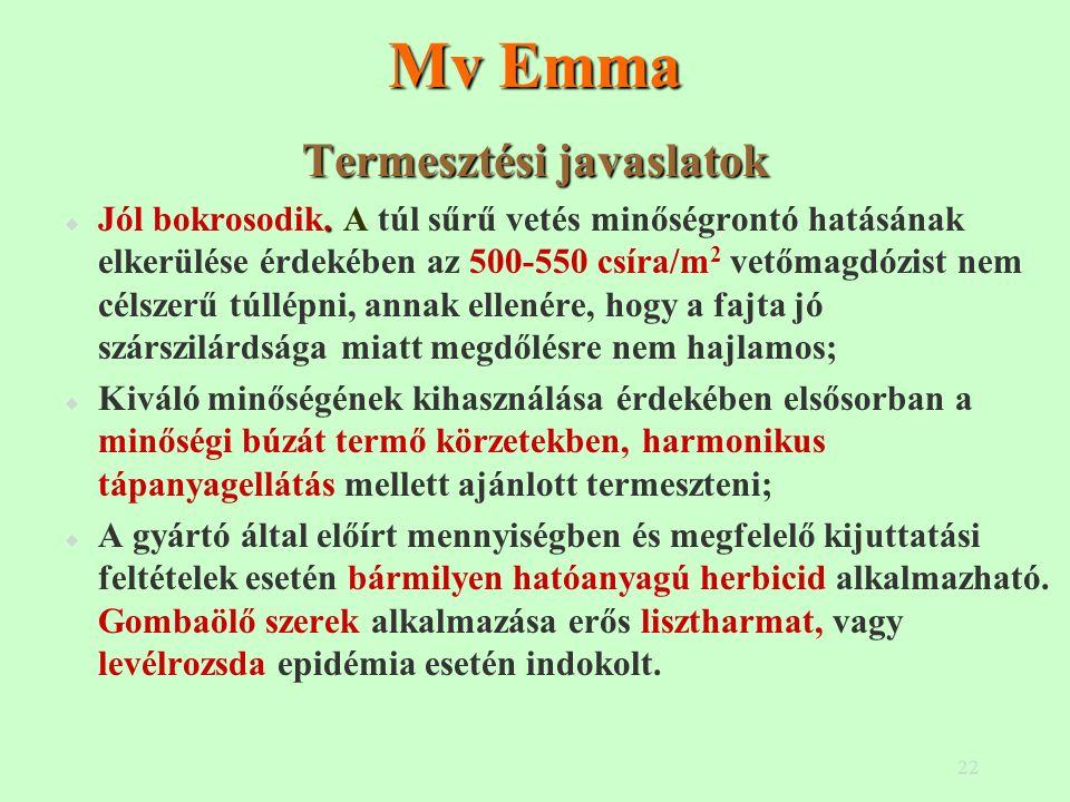 22 Mv Emma Termesztési javaslatok.  Jól bokrosodik. A túl sűrű vetés minőségrontó hatásának elkerülése érdekében az 500-550 csíra/m 2 vetőmagdózist n