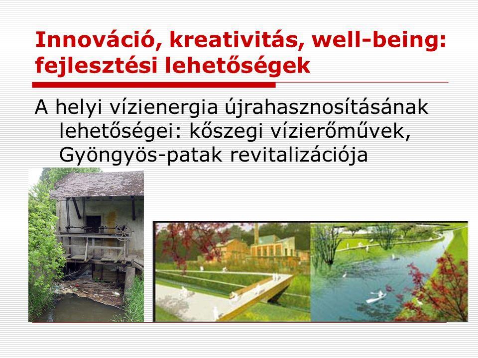 Innováció, kreativitás, well-being: fejlesztési lehetőségek A helyi vízienergia újrahasznosításának lehetőségei: kőszegi vízierőművek, Gyöngyös-patak revitalizációja