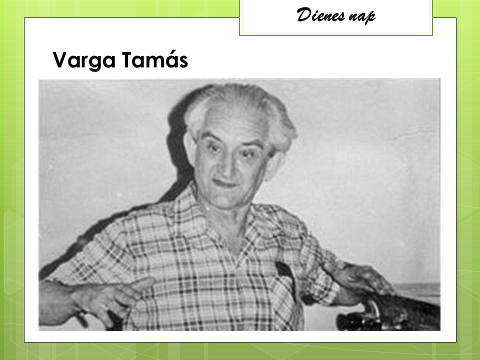 Dienes nap Varga Tamás