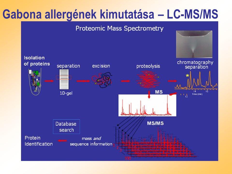 Gabona allergének kimutatása – LC-MS/MS