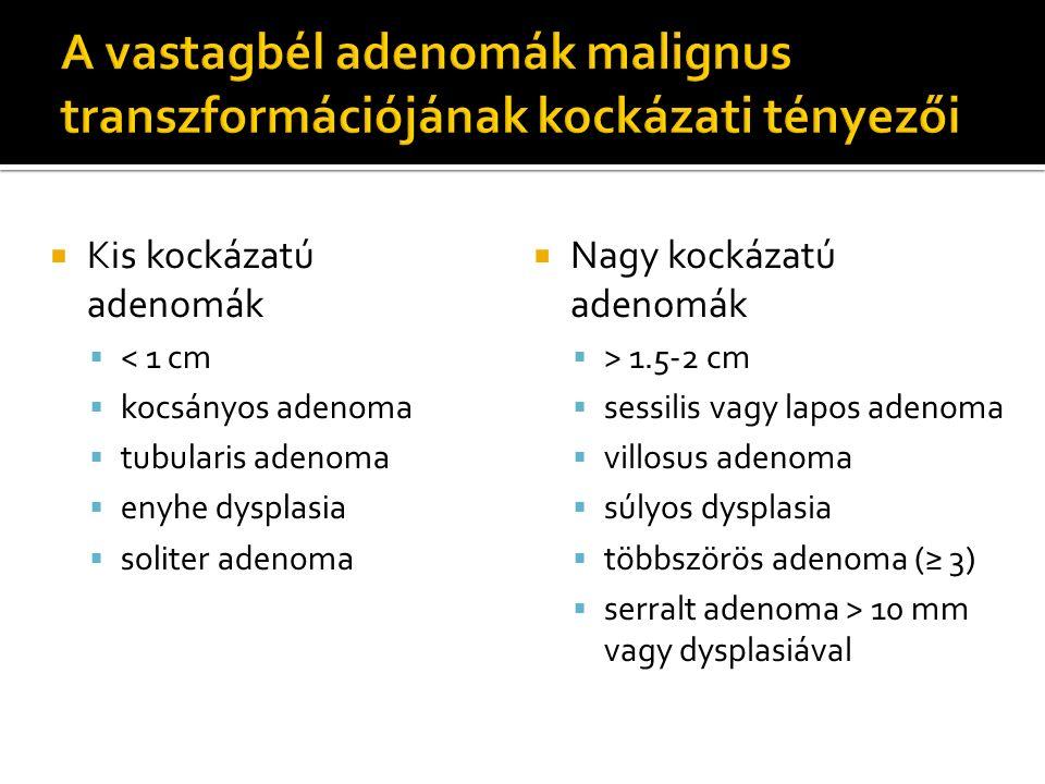  Kis kockázatú adenomák  < 1 cm  kocsányos adenoma  tubularis adenoma  enyhe dysplasia  soliter adenoma  Nagy kockázatú adenomák  > 1.5-2 cm 