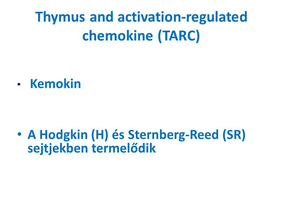 Thymus and activation-regulated chemokine (TARC) Kemokin A Hodgkin (H) és Sternberg-Reed (SR) sejtjekben termelődik