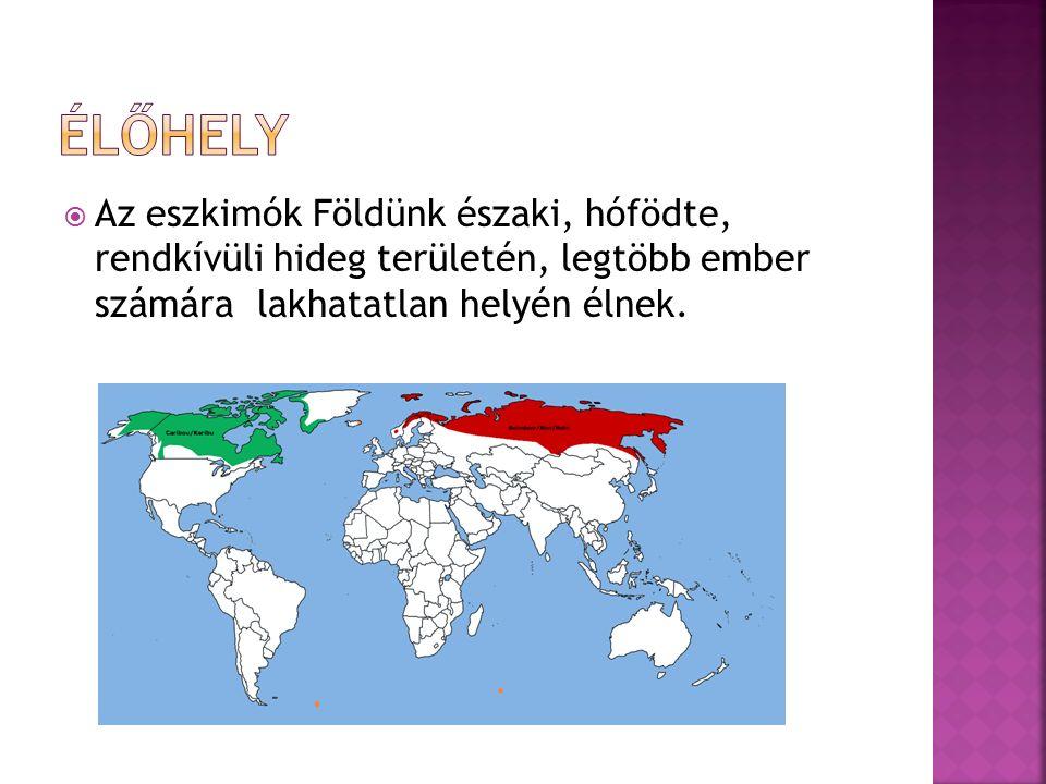  Az eszkimók Földünk északi, hófödte, rendkívüli hideg területén, legtöbb ember számára lakhatatlan helyén élnek.