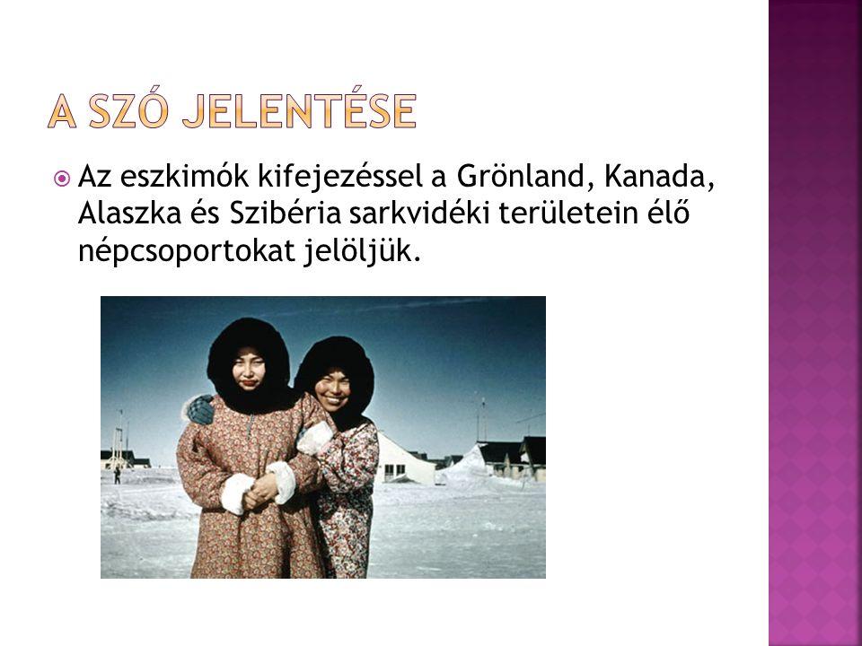  Az eszkimók kifejezéssel a Grönland, Kanada, Alaszka és Szibéria sarkvidéki területein élő népcsoportokat jelöljük.
