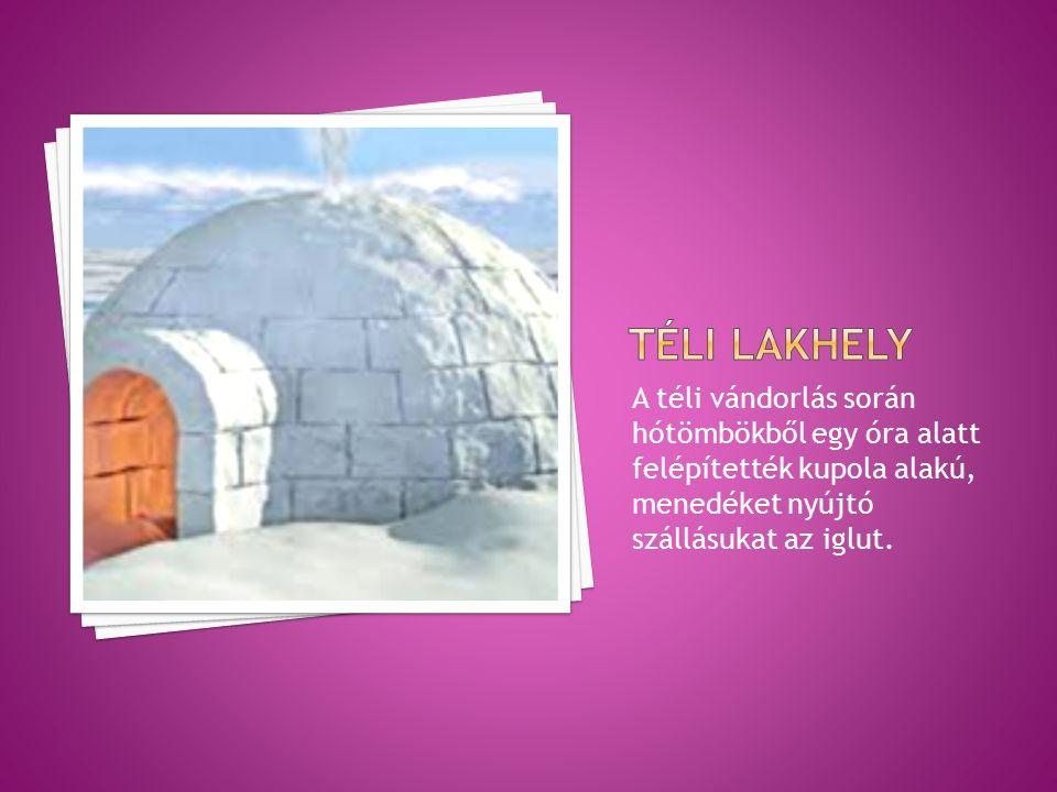 A téli vándorlás során hótömbökből egy óra alatt felépítették kupola alakú, menedéket nyújtó szállásukat az iglut.