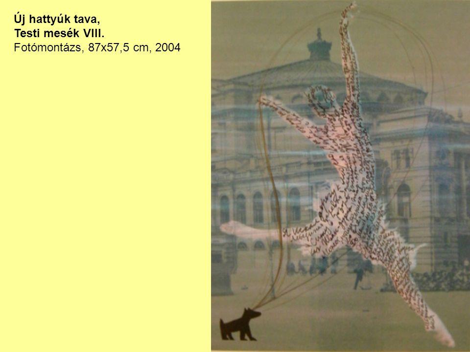 Új hattyúk tava, Testi mesék VIII. Fotómontázs, 87x57,5 cm, 2004