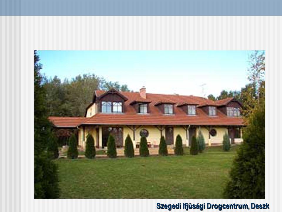Szegedi Ifjúsági Drogcentrum, Deszk