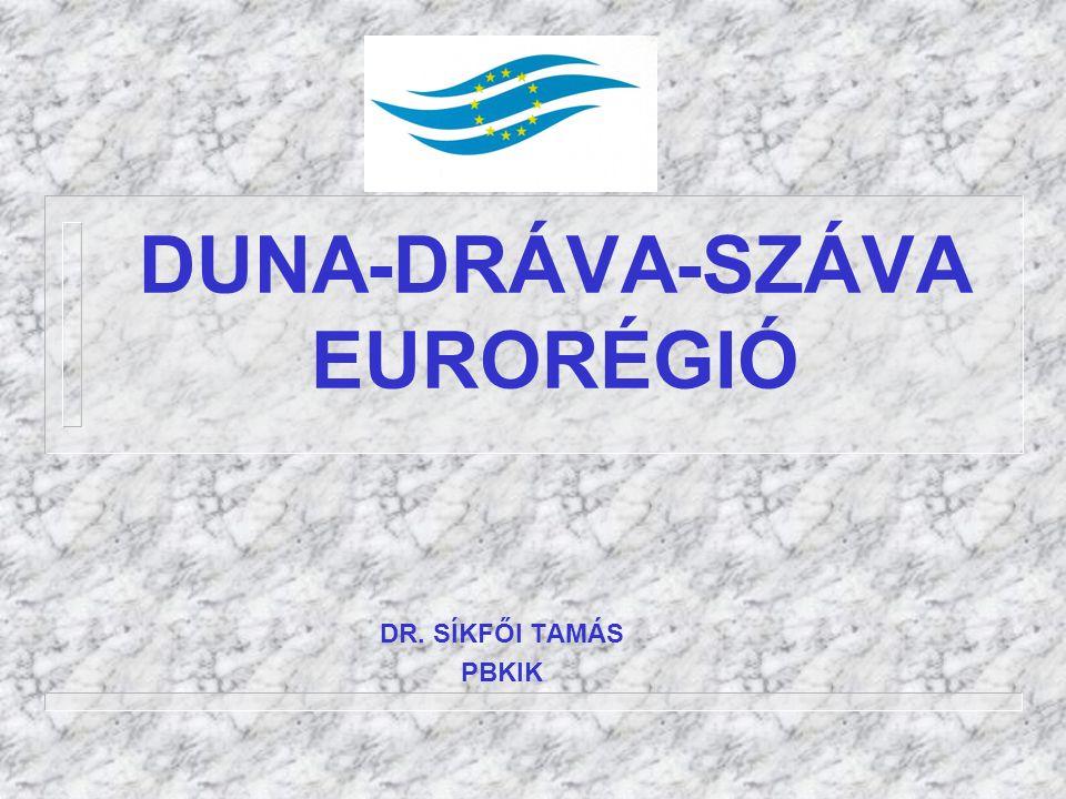 DUNA-DRÁVA-SZÁVA EURORÉGIÓ DR. SÍKFŐI TAMÁS PBKIK