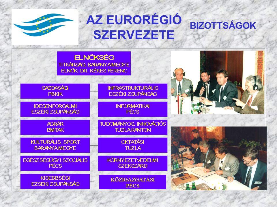AZ EURORÉGIÓ SZERVEZETE BIZOTTSÁGOK KÖZIGAZGATÁSI PÉCS