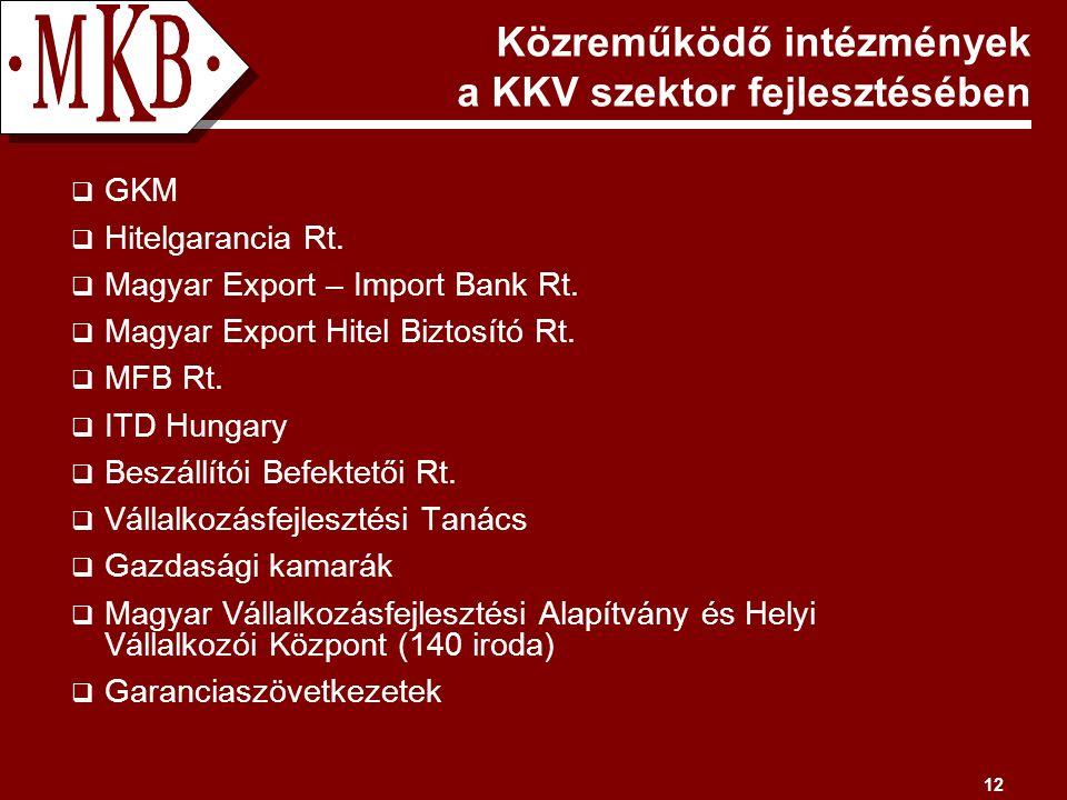 12 Közreműködő intézmények a KKV szektor fejlesztésében  GKM  Hitelgarancia Rt.