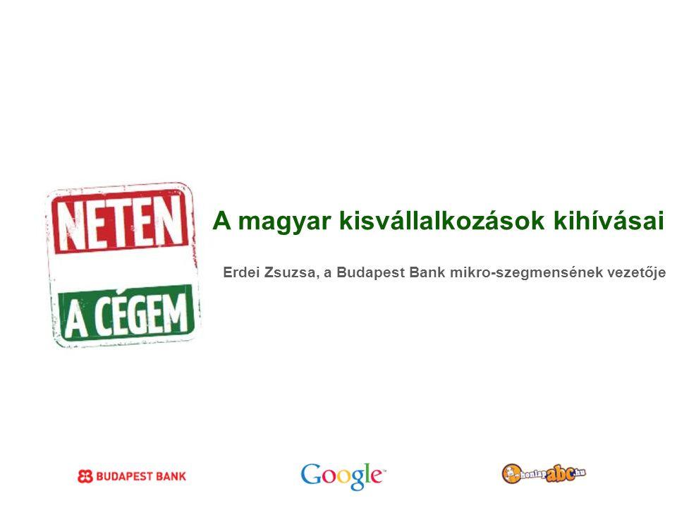 Google Confidential and Proprietary A magyar kisvállalkozások kihívásai Erdei Zsuzsa, a Budapest Bank mikro-szegmensének vezetője