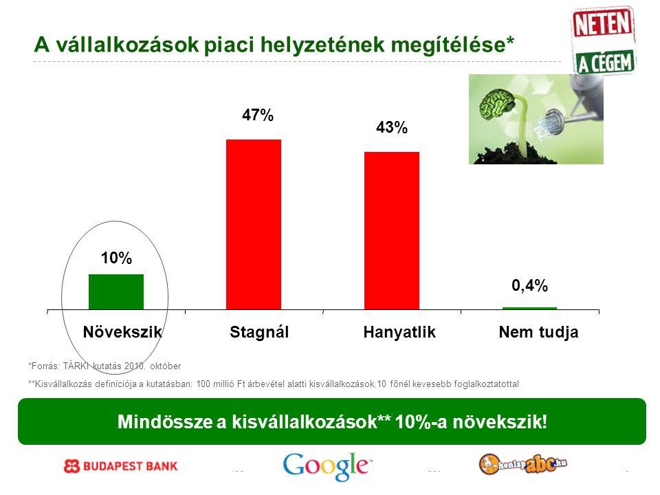 Google Confidential and Proprietary A vállalkozások piaci helyzetének megítélése* 10% 43% 0,4% 47% NövekszikStagnálHanyatlikNem tudja Mindössze a kisvállalkozások** 10%-a növekszik.