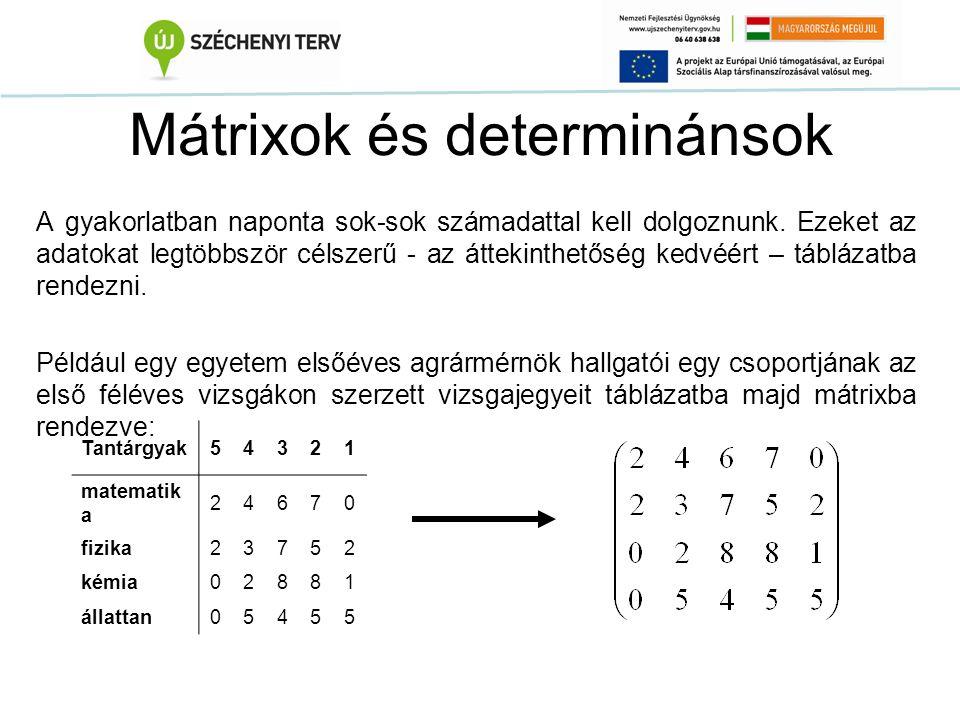 Mátrixok és determinánsok A gyakorlatban naponta sok-sok számadattal kell dolgoznunk. Ezeket az adatokat legtöbbször célszerű - az áttekinthetőség ked