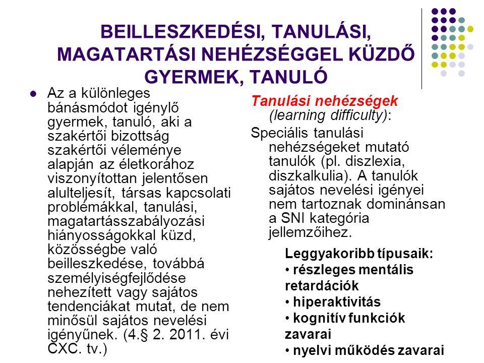 KIEMELT FIGYELMET IGÉNYLŐ GYERMEK, TANULÓ 1.