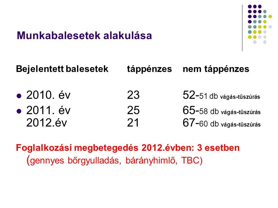Munkabalesetek alakulása Bejelentett balesetek táppénzes nem táppénzes 2010. év2352- 51 db vágás-tűszúrás 2011. év2565- 58 db vágás-tűszúrás 2012.év 2