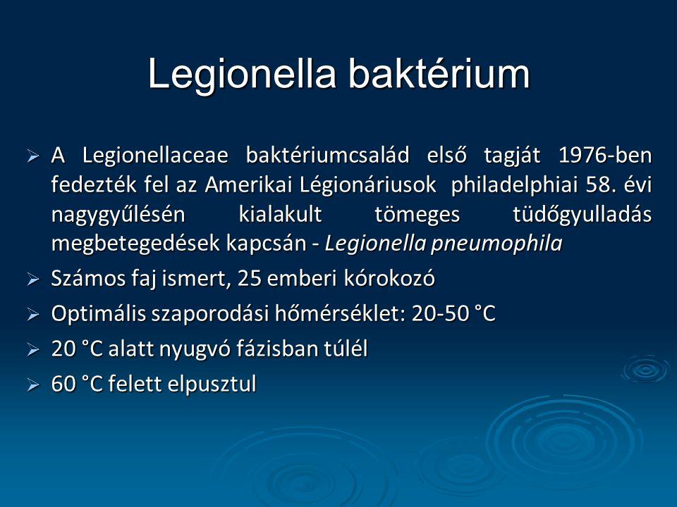 Legionella baktérium  A Legionellaceae baktériumcsalád első tagját 1976-ben fedezték fel az Amerikai Légionáriusok philadelphiai 58. évi nagygyűlésén